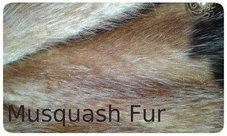 20141016_134337 musquash