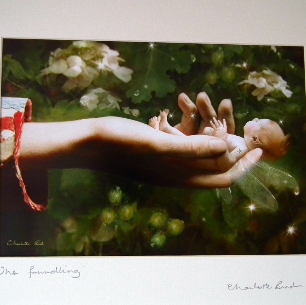 Fairy Print - The Foundling