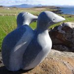 Guillemots  Irish Blue Limestone