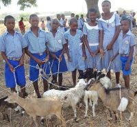 Pupils with Goats 02