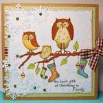 carolines owls best gift and www
