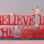 believe in the magic (15)