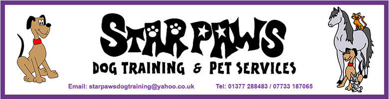 Star Paws Dog Training, site logo.