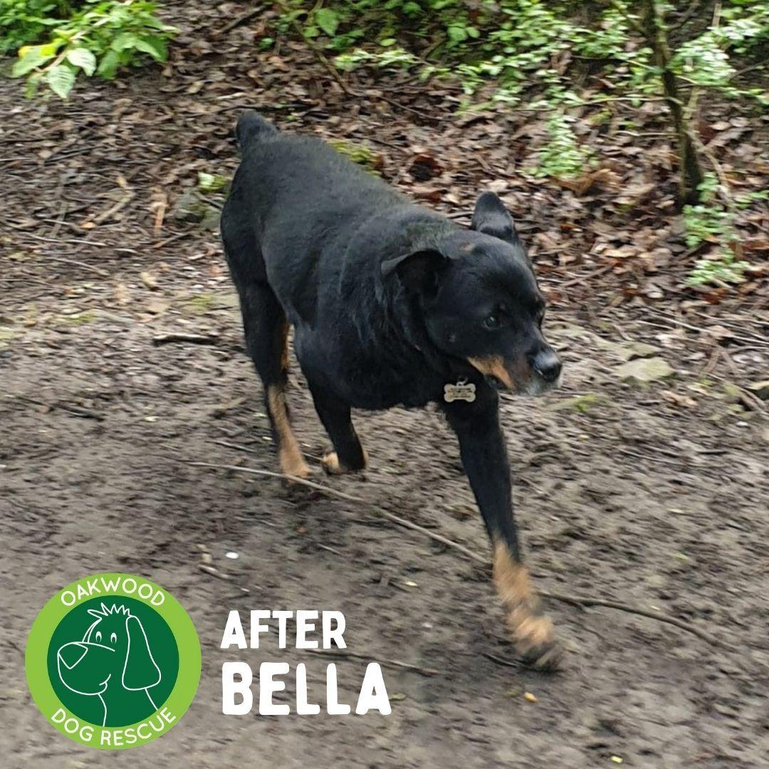 After bella.jpg