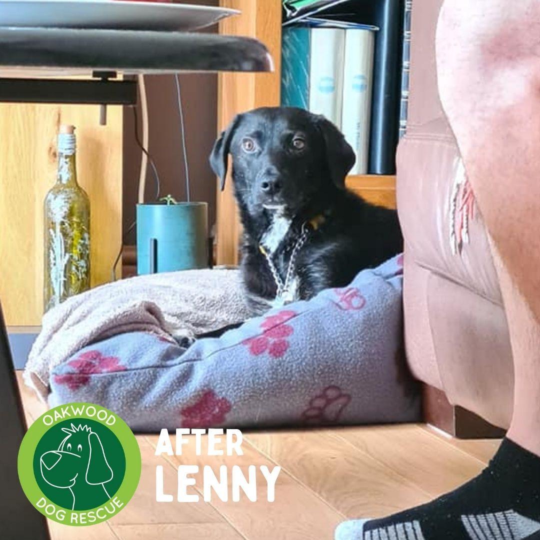 After Lenny.jpg
