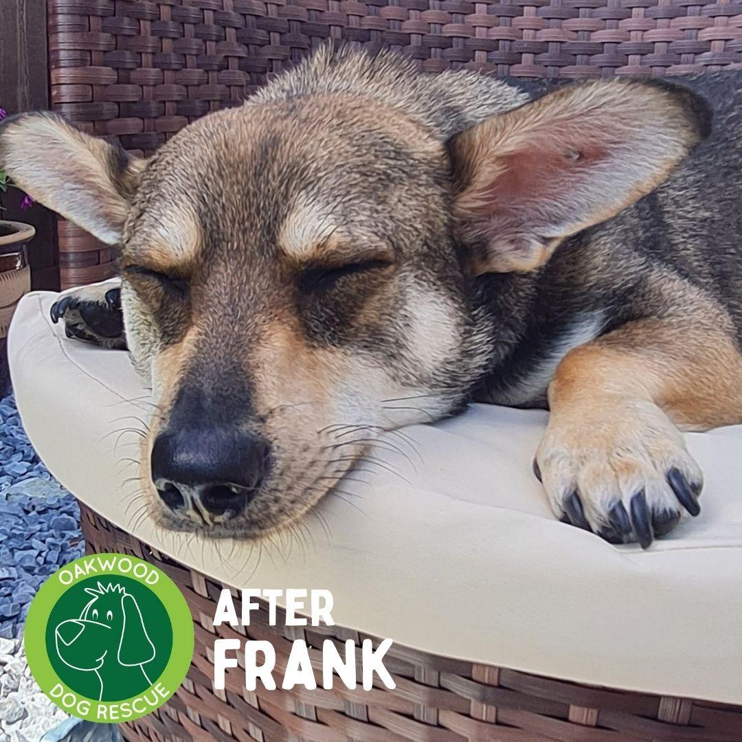 After Frank.jpg