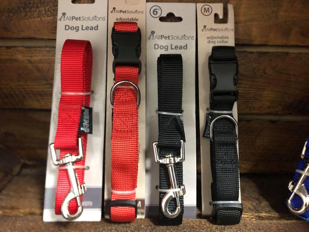 Medium Collar and Lead set - 30-40cm