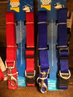 Large Collar and Lead set - 35-50cm