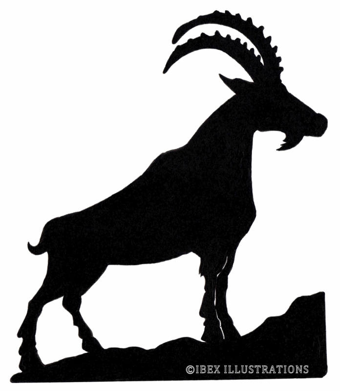 Ibex Illustrations Logo