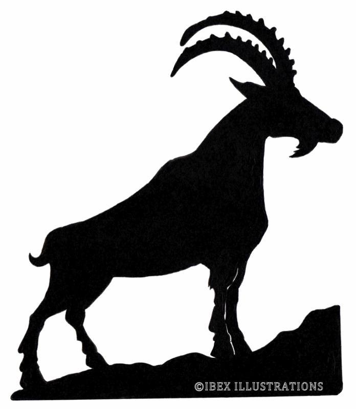 Ibex Illustrations Logo