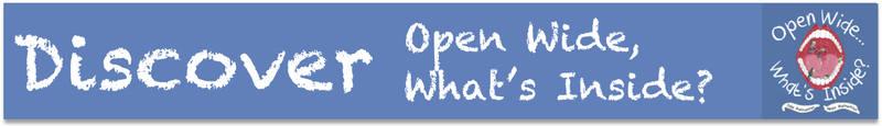 OWWI banner blue jpg