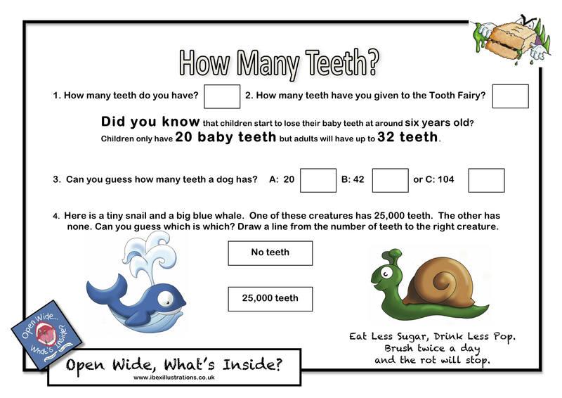Resource F1 - How Many Teeth jpg
