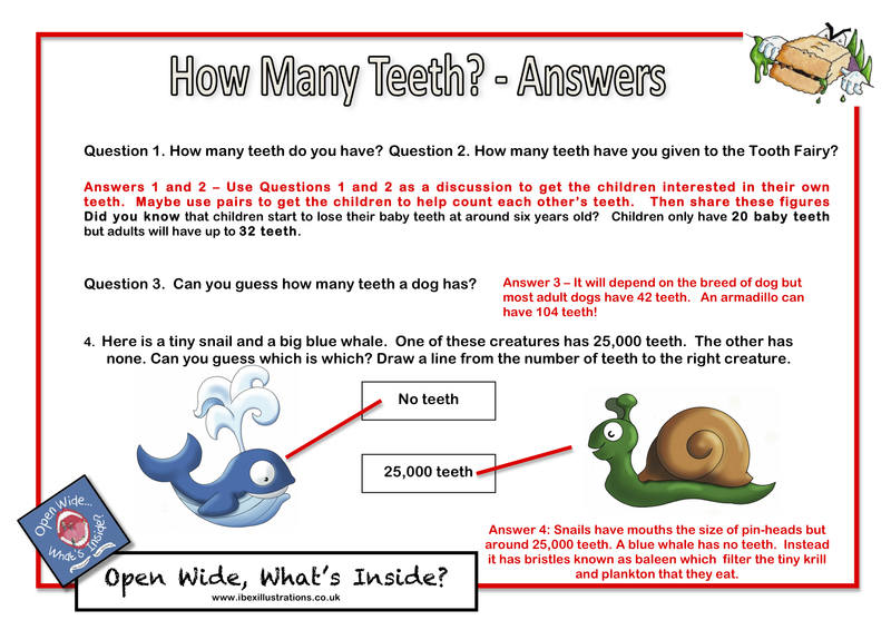 Resource AF1 - Answers - How Many Teeth jpg