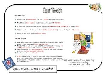 Resource F2 - Our Teeth jpg