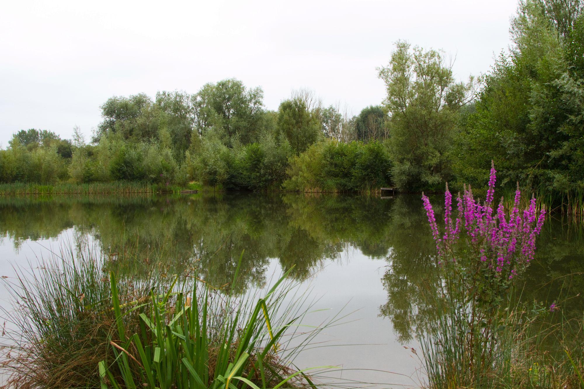 Islamd Lake