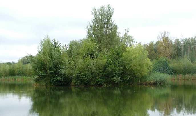 island lake