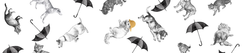 Raining Cats & Dogs Full