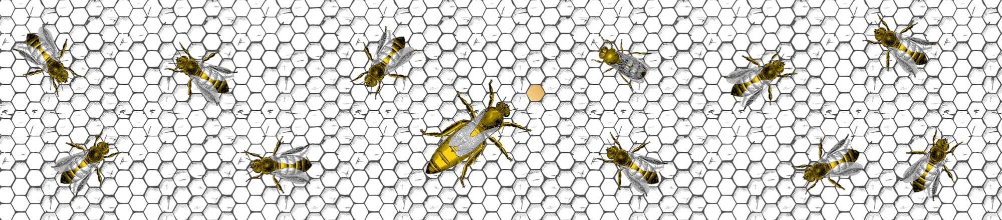 Bees 30cm Shade Full