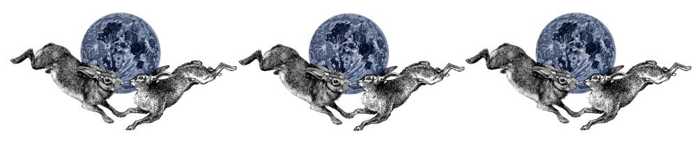 Hare Full 1