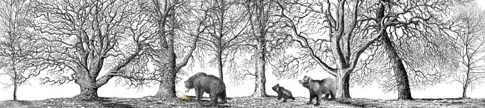 Bears full copy