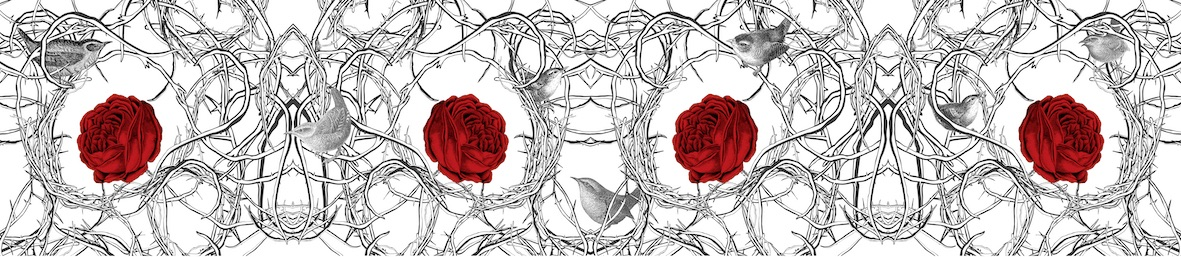 Red Roses Final copy