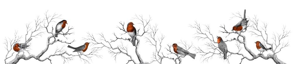 Robins full