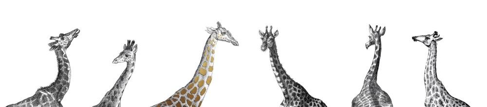 Giraffe full copy