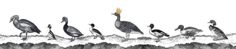 Ducks Lampshade Full