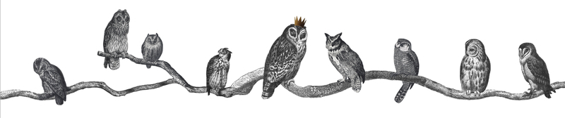 Owls lampshade Full