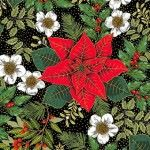 Makower - Deck the Halls - Large poinsettia on black - metallic