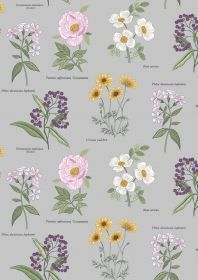 Lewis & Irene - Botanic Garden - Botanic flowers on light grey