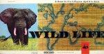 'Wild Life' Board Game