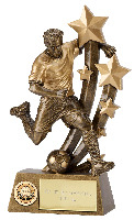 Sentinal Player Trophy from £7.49 - £21.99