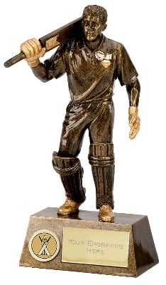 Pinnacle Cricket Batsman Trophy A1251B 18cm