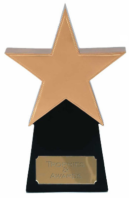 Golden Star Multi Award Trophy A369A 16cm