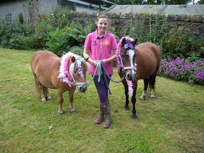 fynn & ponies