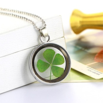 Natural Dried Shamrock Leaf Good Luck Pendant - Round