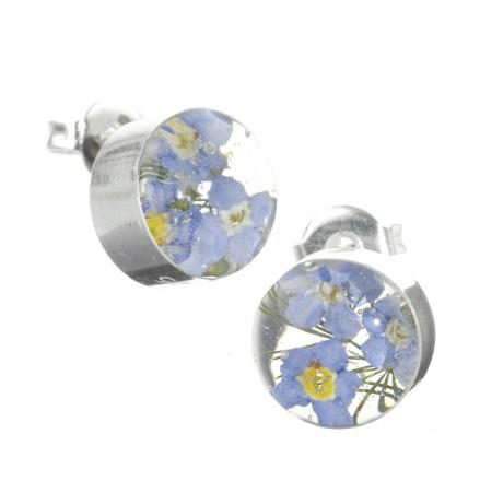 Real flower jewellery foprget me not stud earrings round