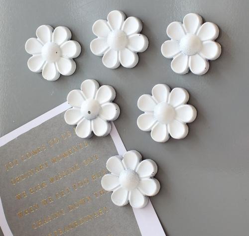 Magnets - 6 Ornate Roses