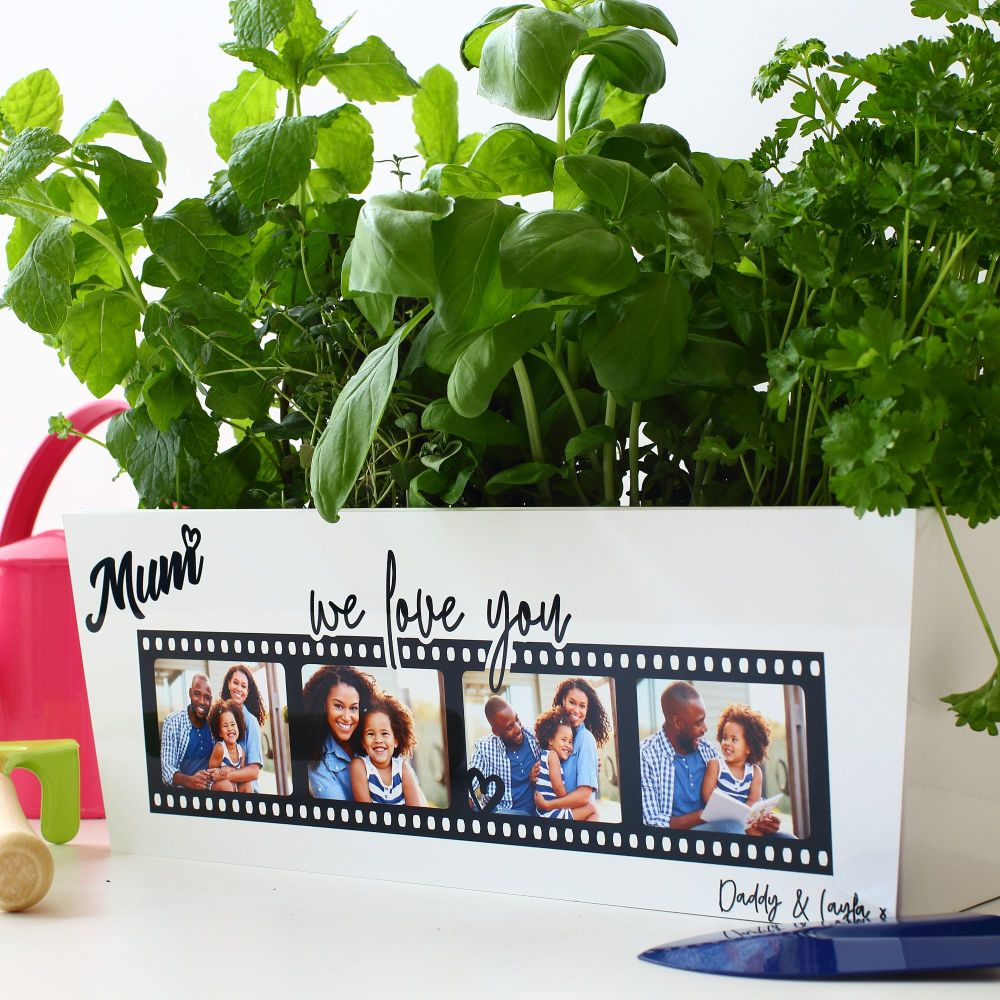 Steel Planter - Filmstrip