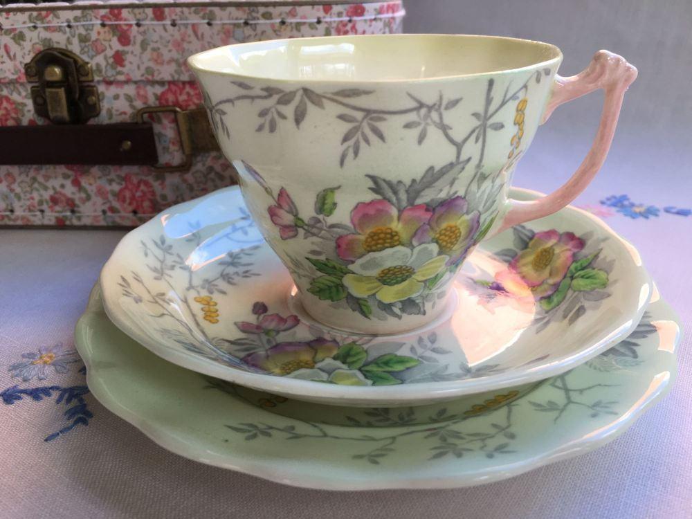 Sampson Smith, Old Royal bone china, Tea for One Set