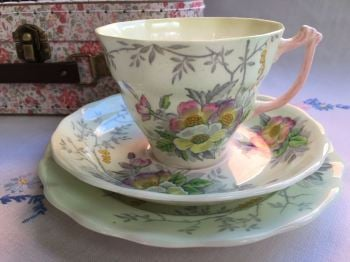 Sampson Smith, Old Royal bone china, Tea for One Set