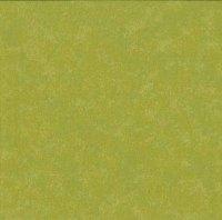 Makower Fabric - Spraytime - Grass Green 2800 G36 - 100% Cotton