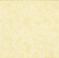 Makower Fabric - Spraytime - Light Cream 2800 Q03 - 100% Cotton