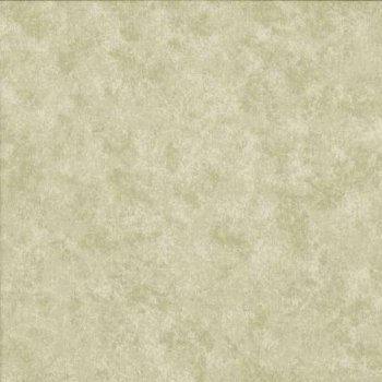 Makower Fabric - Spraytime - Stone 2800 S53 - 100% Cotton