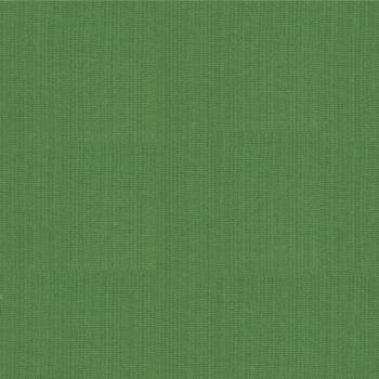 Moda Fabric - Bella Solids - Dill Green - 100% Cotton