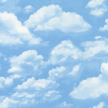 Timeless Treasures Fabric - Sky - 100% Cotton