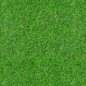 Timeless Treasures Fabric - Football Field Grass - 100% Cotton - 1/4m+