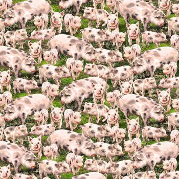 Timeless Treasures Fabric - Farm Life - Pigs - 100% Cotton - 1/4m+