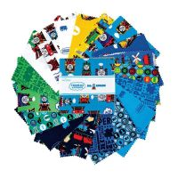 Riley Blake Fabric - Thomas and Friends All Aboard - 5